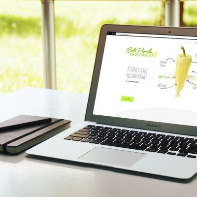 laptop-mockup_bako